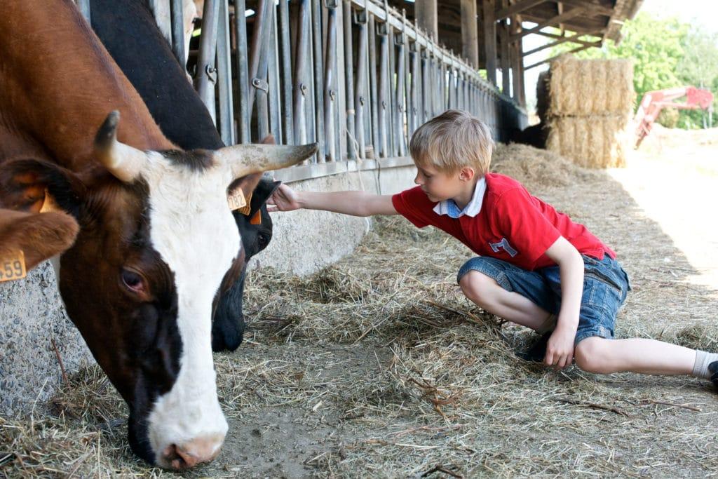 agriculture reponsable alimentation durable scolaire on se met au vert crt bretagne ell diaphane prod 1024x683 Scolaire