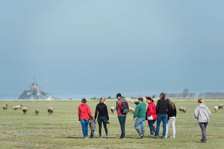 Groupe de collègues se promenant avec un berger près du Mont Saint Michel