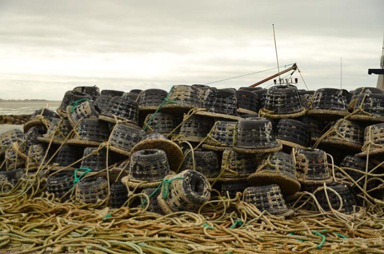 Casier sur un port du Cotentin lors d'une balade eco-responsable avec On se met au vert