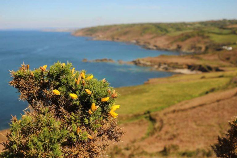 Balade eco responsable dans le Cotentin