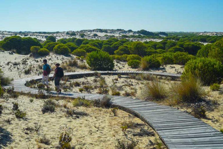 Balade dans les dunes du parc national de Donana lors d'un séjour multi-activités avec On se met au vert